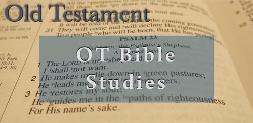 BFF OT Bible Studies