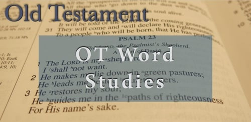 BFF OT Word Studies