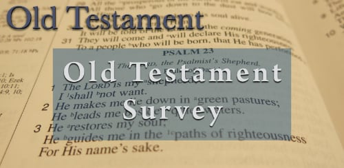 BFF Old Testament Survey